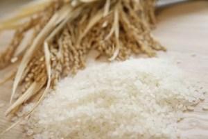 米粉ダイエットの効果とやり方や口コミとレシピ!