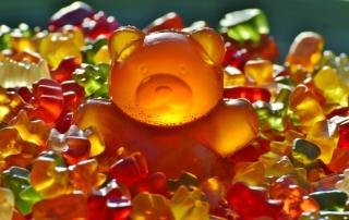 Giant Rubber Bear Gummibar Gummibarchen Fruit Gums