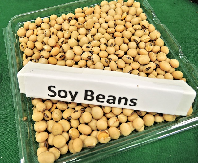 Soy Beans 968986 640