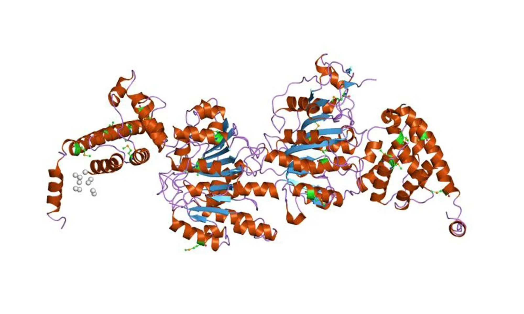 image of DNA-methyltransferases