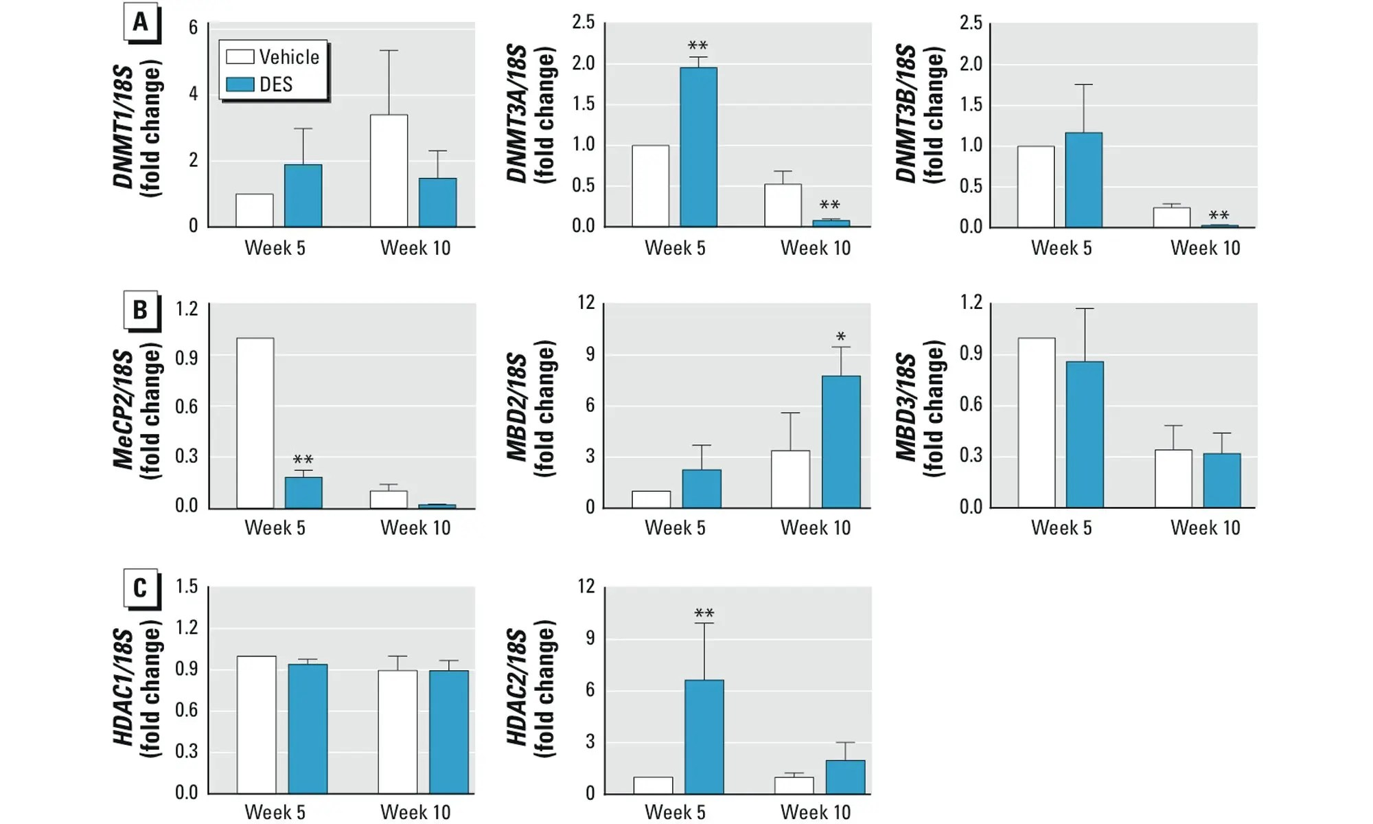 image of Effect of neonatal DES exposure on Svs4 (A) or Ltf (B) gene expression in SVs of mice 10 weeks after treatment with vehicle or DES
