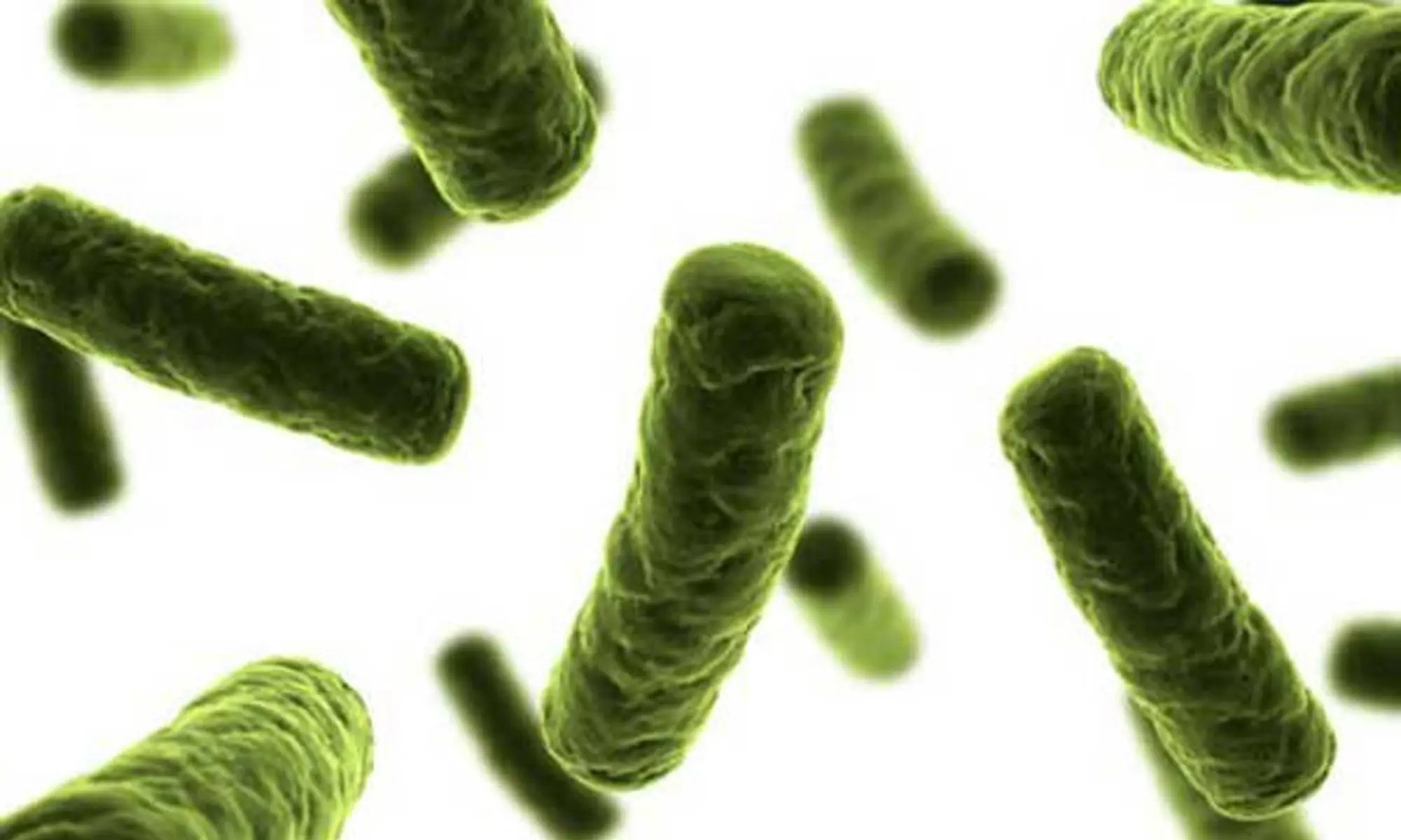 image of bacterial-attack