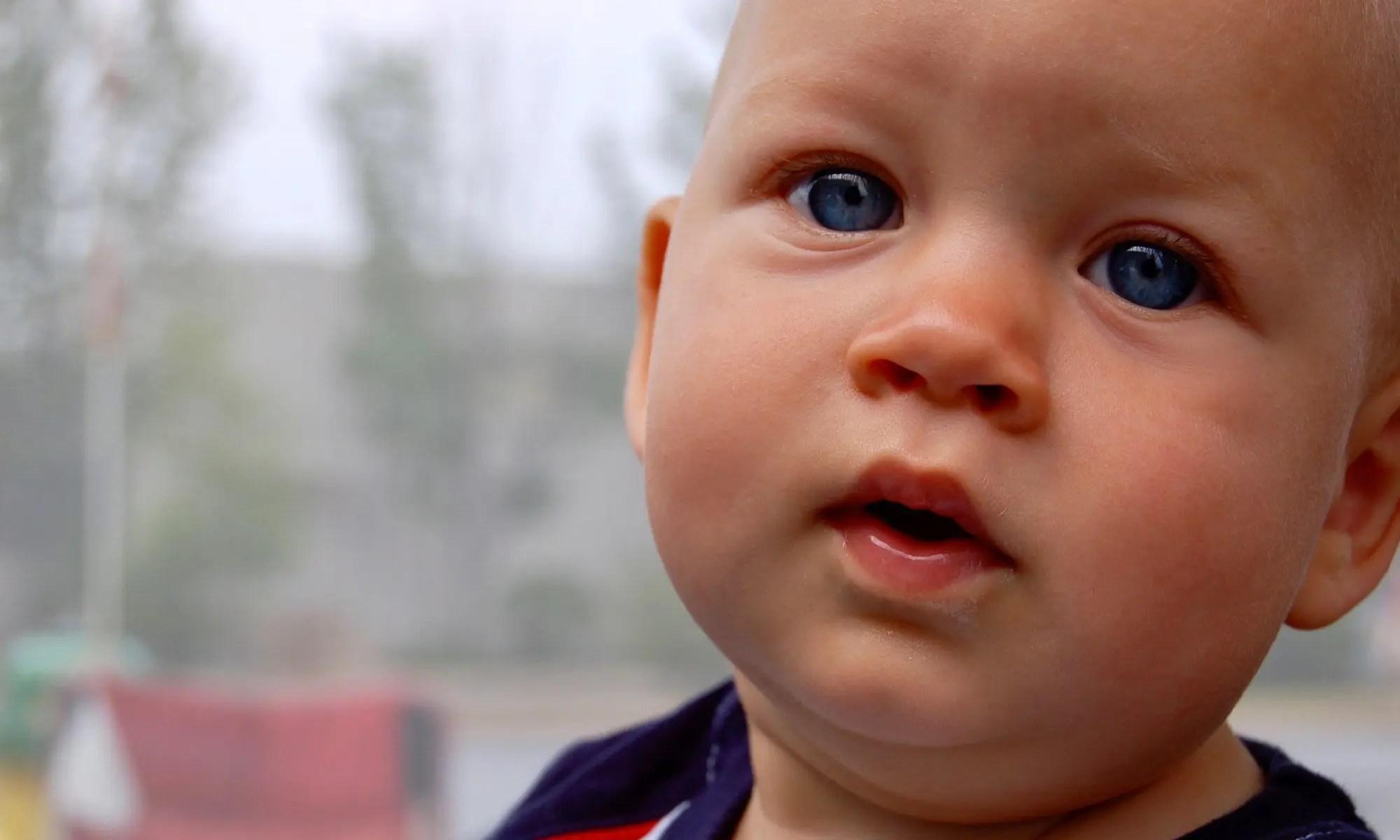 image of des grandson