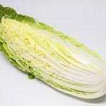 白菜のダイエット効果や成功する方法やスープなどレシピ!