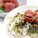 お茶漬けダイエット成功の方法や効果!豆腐入りなどレシピは?