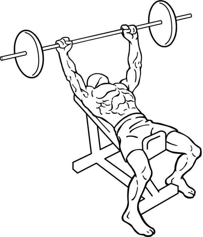 Incline Bench Press For (Muscles Worked, Form, Machine, Flat, Angle Alternative)