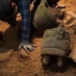 Die Stadt des Affengottes: Eine unbekannte Zivilisation, ein mysteriöser Fluch, eine wahre Geschichte (Videos)