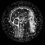 Leck im Gehirn. Warum es so wichtig ist, die Blut-Hirn-Schranke vor Schadstoffen zu schützen