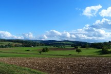 spaziergang-09-10-08