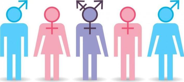 grafic) Care este diferența dintre identitatea de gen, expresia de gen și sexul biologic - #diez