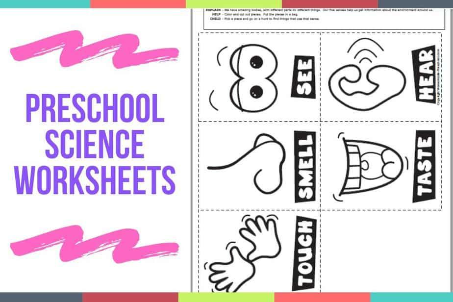 Printable Preschool Science Worksheets