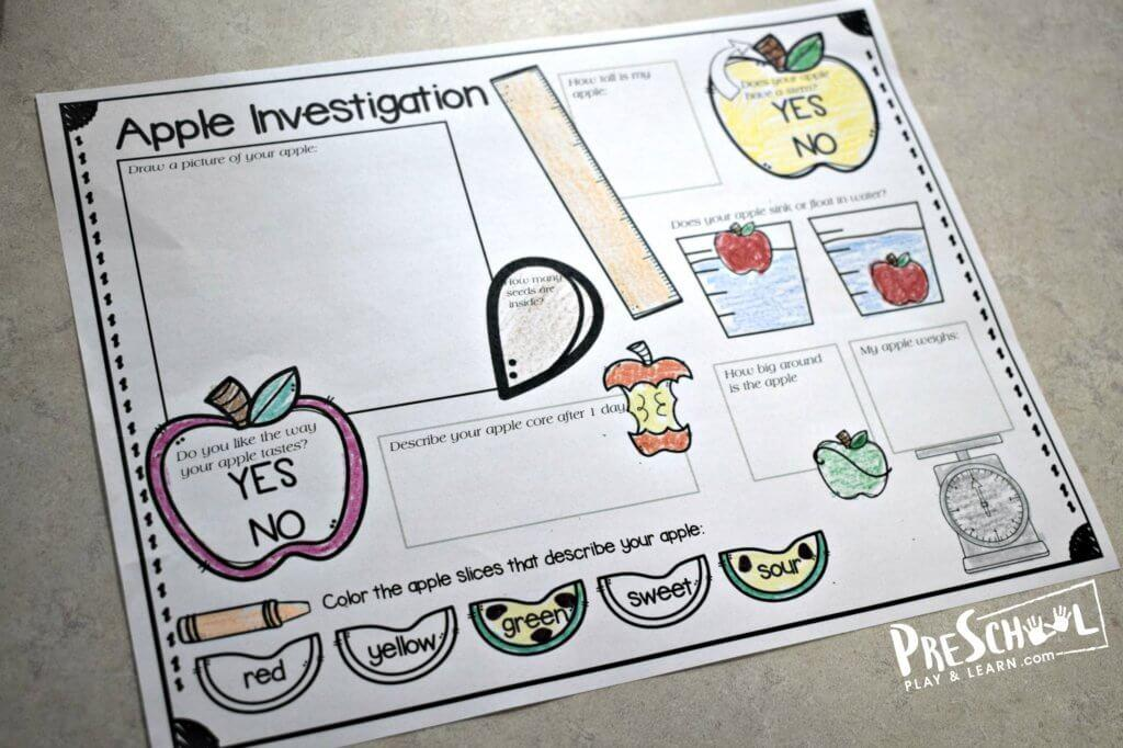 Science Themed Worksheets Preschool