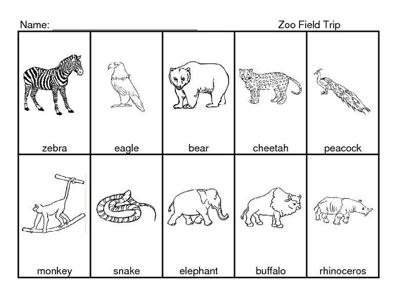 Preschool Zoo Worksheets 5