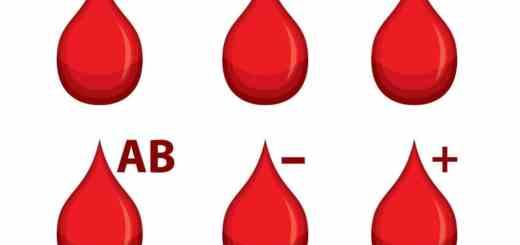 sangre y plaquetas