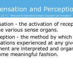 Difference between Sensation and Perception