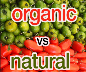 Difference between natural and organic
