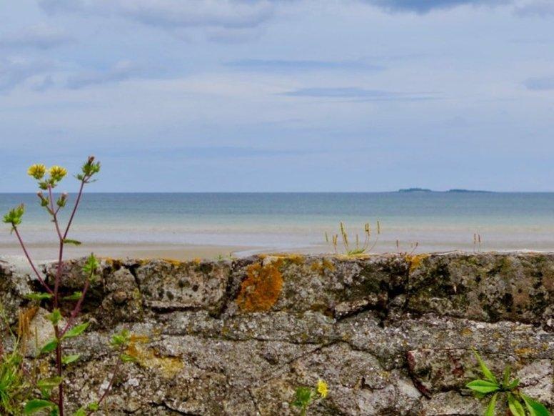 Plonger en Normandie sur les îles Saint Marcouf