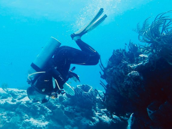 Un plongeur fait une drôle de pause sous l'eau