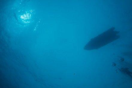 Photo d'un bateau, d'un plongeur et d'un dauphin prise du bas