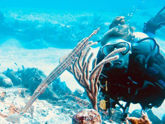 Une femme plonge et observe un poisson