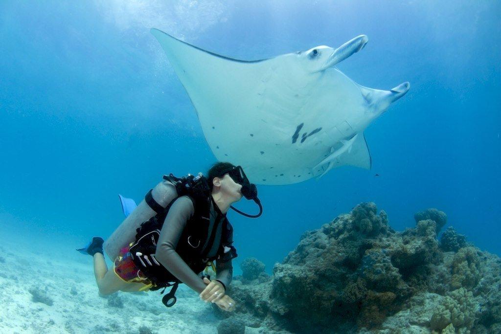 Une femme qui plonge à côté d'une raie en Polynésie