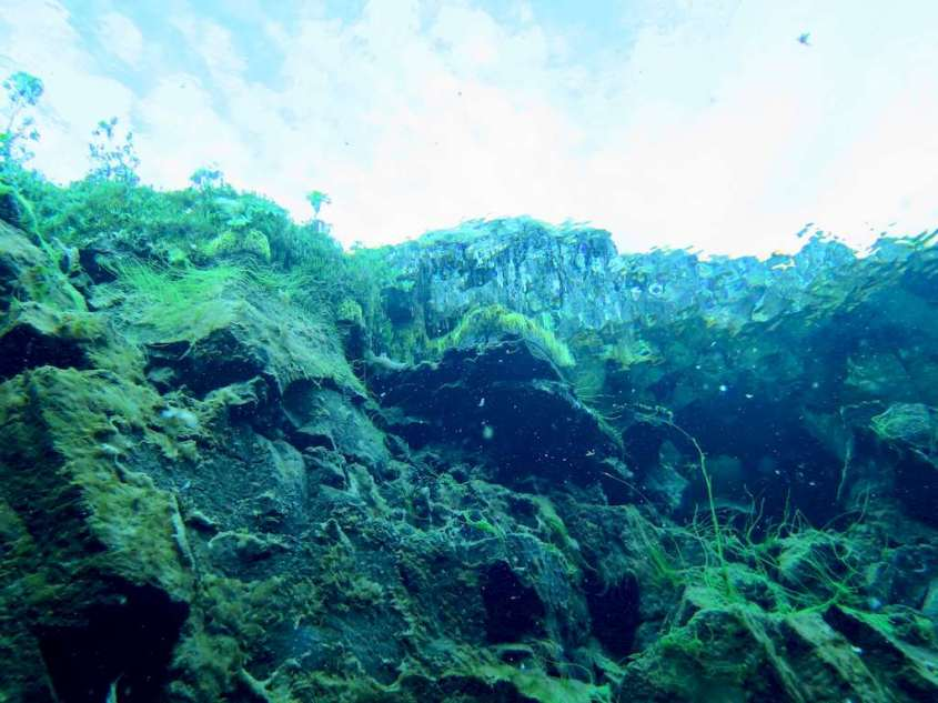Photo prise sous l'eau vers l'extérieur de l'eau