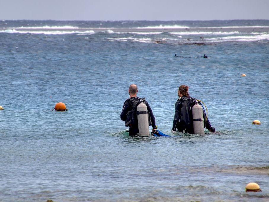 Les métiers de la plongée sont variés comme c'est le cas pour ces deux plongeurs avançant dans la mer