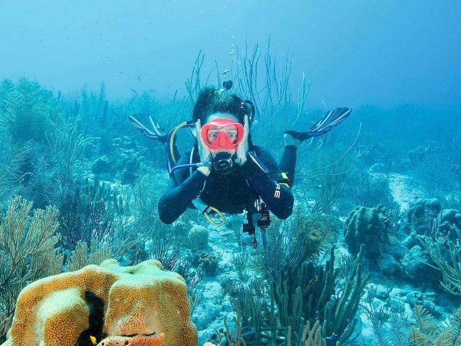 Casser du corail en plongée est ce qu'à fait cette plongeuse qui en est désolée.