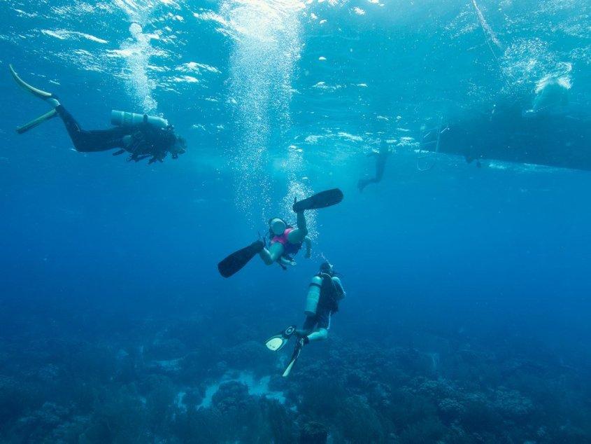 Des plongeurs se dirigent vers le bateau sous l'eau
