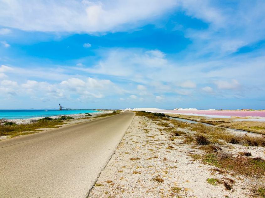 La route près de Salt Pier à Bonaire sépare le bleu de l'océan du rose des marais salants