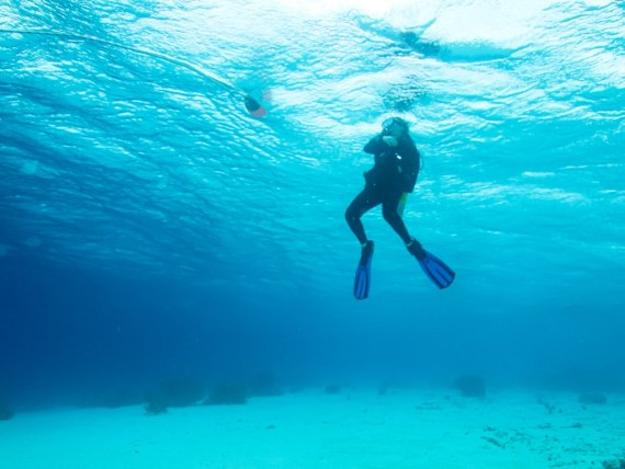 Un plongeur fait son palier de sécurité dans les eaux chaudes de Bonaire.
