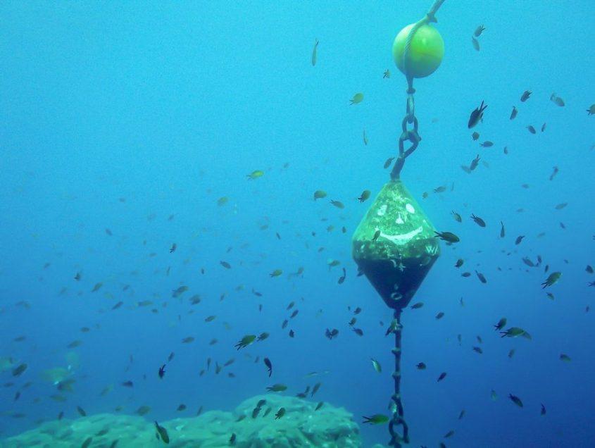 Projets de plongée : comment les réaliser ?