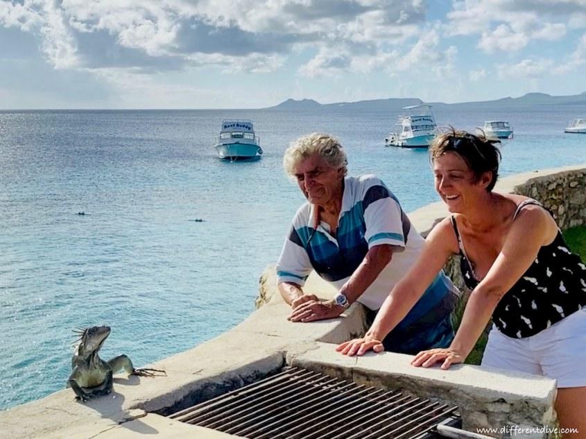 Hélène Adam et Dominique Sérafini regarde un iguane sur un muret devant la mer à Bonaire