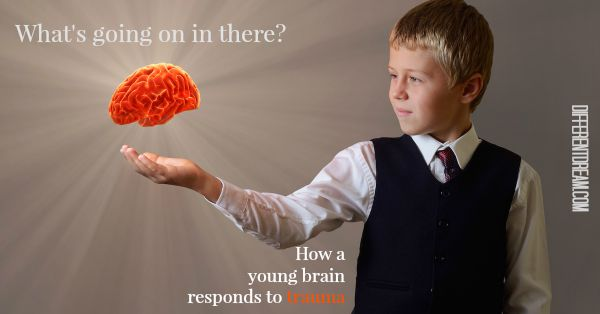 A Look Inside: The Brain's Response to Childhood Trauma