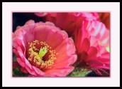 20140507-_DSC1983-framed