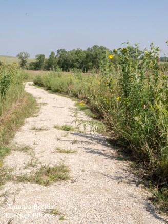 Tallgrass-Prairie-National-Preserve-6526