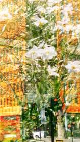april garden 3