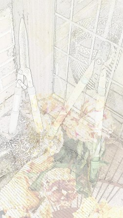 traces 22