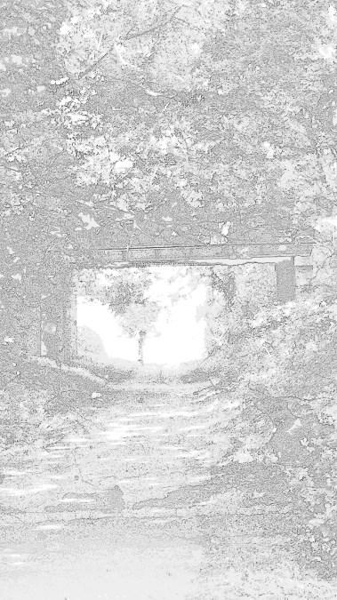 traces 4