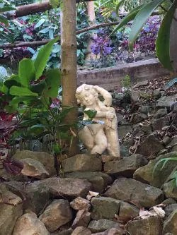 Cherub in Wendy's Secret Garden Sydney