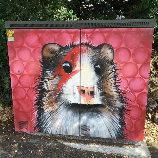 One of the unusual things to do in Auckland is spotting all the art work on the utility boxes - my favourite are by an artist called Paul Walsh.