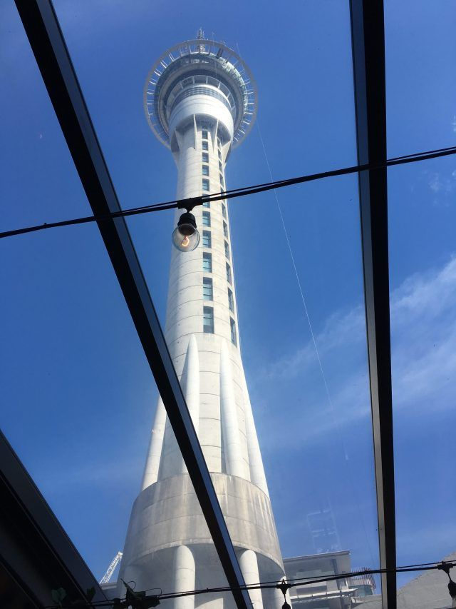 Jumping off Auckland's Sky Tower in a controlled bungy is one of the unusual things to do in Auckland, but just as much fun is sitting under the glass roof of the Glass Goose bar and watching them descend.