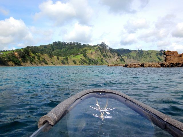 Goat Island marine reserve is home to New Zealand's first clear bottom kayak's the Clearyak - here's what happened when we went paddling.