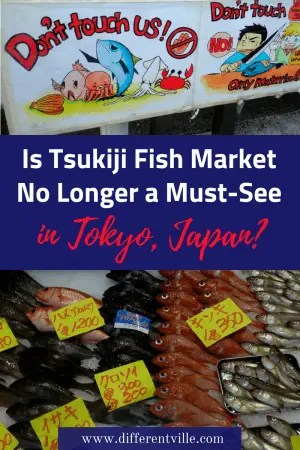 Planning a trip to Tokyo? Tsukiji Fish Market has long been a Tokyo must-see, but new rules mean this may no longer be the case. Click to find out how the new rules might affect your visit - and the lesser known part of the market that is a must visit instead. #tsukijifishmarket #tokyo #thingstodointokyo