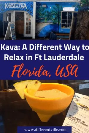 Want to chill out in Florida without hitting the theme parks? Why not try one of the States kava bars. Florida is now home to over 50 bars serving kava. But what's it like to drink it - and where can you find a kava bar in Florida? #florida #kava #herbalremedies