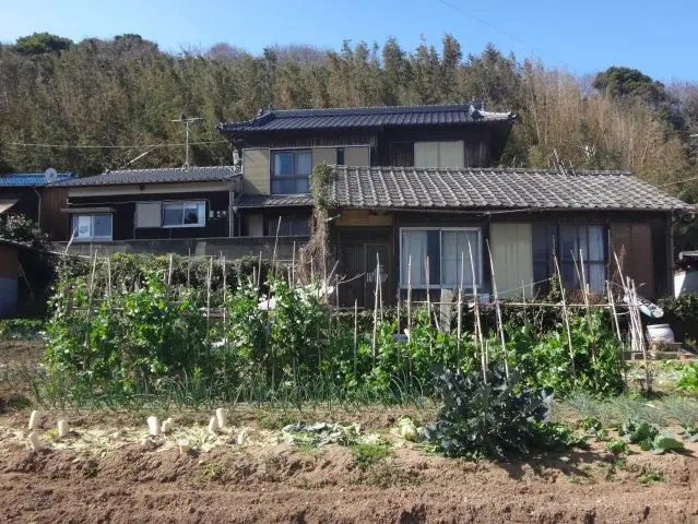 Cute house on Ainoshima Island, near Fukuoka Japan - the island is best known for it's cats.