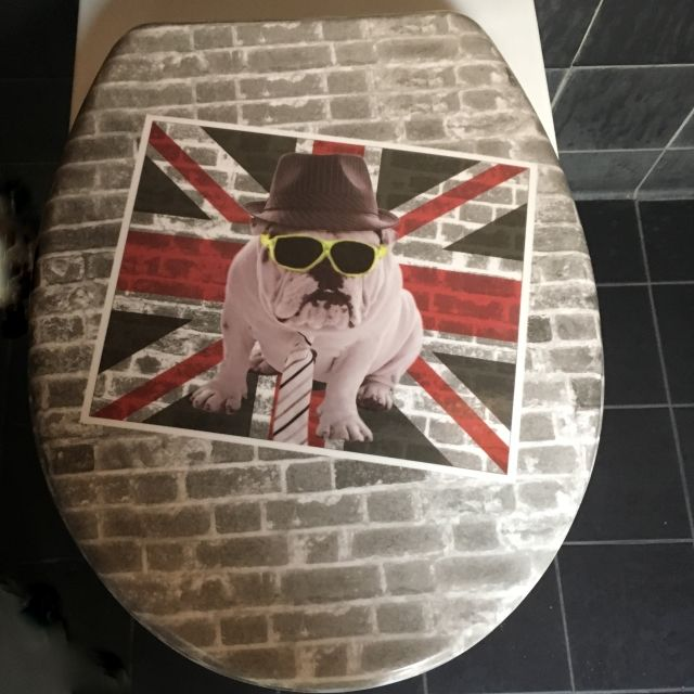 Toilet seat with a British Bulldog on - the Jubiloo on the London Loo Tour