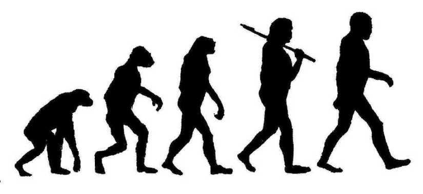 2014-06-09 Evolution