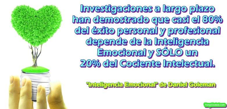 Inteligencia Emocional para el Éxito