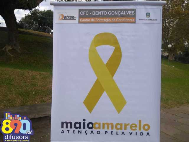 MAIO AMARELO6